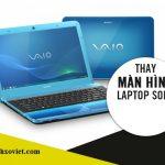 Thay Màn Hình Laptop Sony Vaio